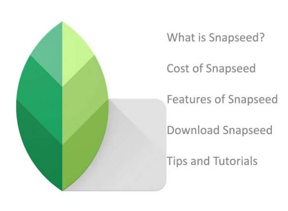 Tips and Tutorials of Snapseed app in Photography