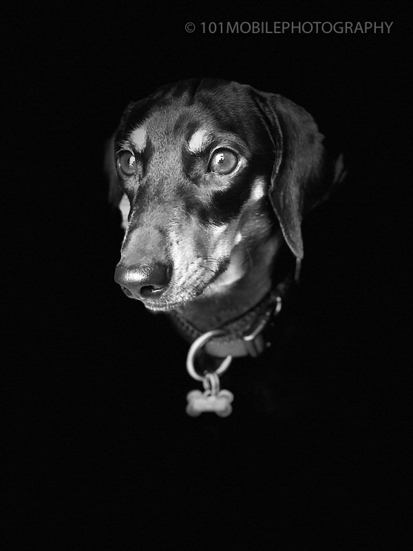 iPhone black and white portrait