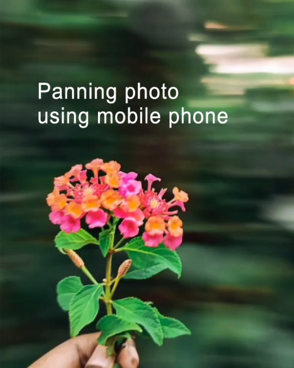 How to take a panning photo using mobile phone